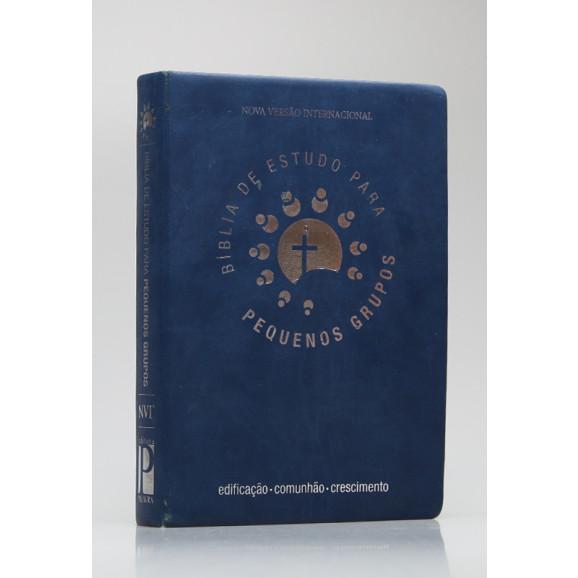 Bíblia de Estudo Para Pequenos Grupos   NVI   Letra Grande   Luxo   Azul