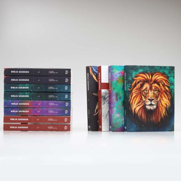 Caixa Com 12 Bíblias Para Evangelismo | Premium | ACF | Brochura