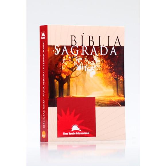 Bíblia Sagrada   NVI   Letra Média   Brochura   Estampa Unica