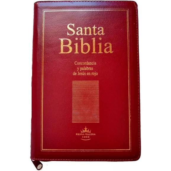 Bíblia em Espanhol | Santa Bíblia | Letra Grande | Luxo | Vinho | Zíper