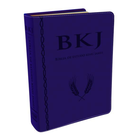 Bíblia de Estudo Holman   King James   Letra Grande   Luxo   Azul