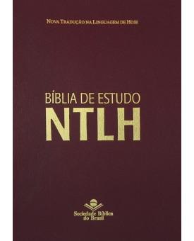 Bíblia de Estudo | NTLH | Letra Grande | Couro Bonded | Vinho