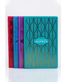 Kit 4 Livros | Seus Evangelhos Comentados | NVI | Edição Premium