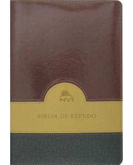 Bíblia de Estudo | NVI | Letra Média | Luxo | Verde Bege e Vinho