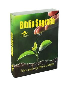 Bíblia Sagrada | NTHL | Brochura | Esperança | Evangelismo