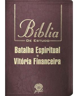 Bíblia de Estudo Batalha Espiritual e Vitória Financeira   NVI   Letra Grande   Luxo   Vinho