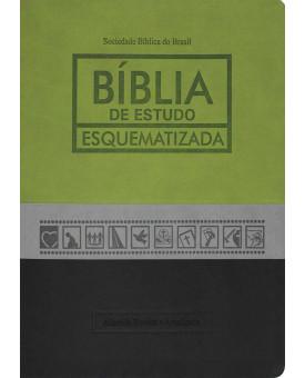 Bíblia De Estudo Esquematizada | Verde/Cinza/Preta