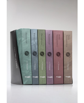 Box 6 Livros | Comentário Bíblico Expositivo | Warren W. Wiersbe