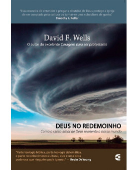 Deus no Redemoinho | David F. Wells