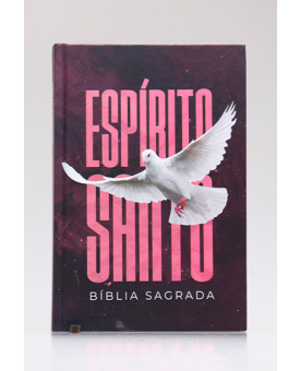 Bíblia Sagrada | ACF | Letra Média | Capa Dura | Espírito Santo | 942 Páginas