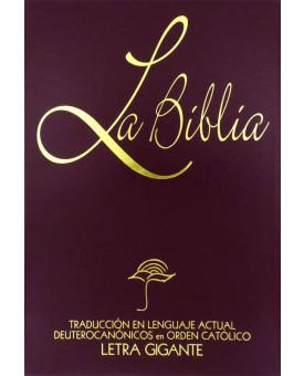 La Bíblia | TLA | Letra Gigante | Vinho | Grande | Luxo