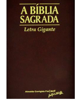 A Bíblia Sagrada | ACF | Letra Gigante | Luxo | Vinho