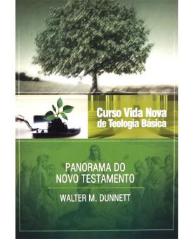 Livro Curso Vida Nova De Teologia Básica | Panorama do Novo Testamento | Vol. 3