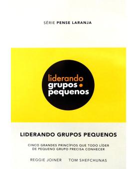 Livro Liderando Grupos Pequenos