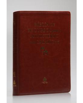 Bíblia Recursos para Ministério com Crianças | RA | Luxo | Marrom