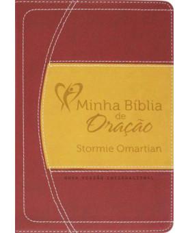 Minha Bíblia De Oração | Vinho/Laranja