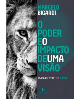 O Poder e o Impacto de uma Visão   Marcelo Bigardi