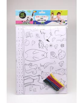 Livro-pôster para Colorir   Selva   Brasileitura
