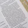 Bíblia Sagrada | NVI | Leitura Perfeita | Letra Normal | Capa Dura | Dourada
