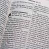 Bíblia Sagrada | NTLH | Letra Gigante | Pink | Luxo | Índice