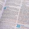 Bíblia Visual   NTLH   Letra Normal   Capa Sintética   Azul