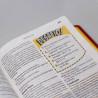 Bíblia em Ação de Estudo   Luxo   Vermelha